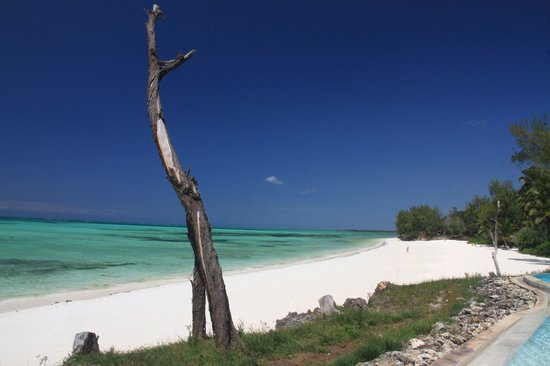 Pongwe Beach Hotel : down the beach from the pool
