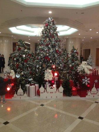Maison Glad Jeju: ロビーのクリスマスツリー