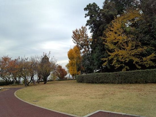 The Historic Square Hiragizuka Kofun Tomb
