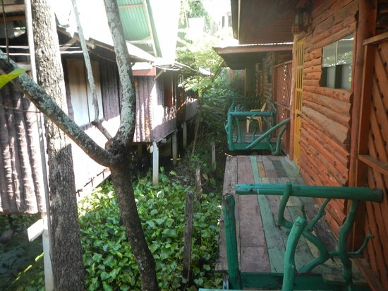 Sam's Guesthouse: Bungalows at the back