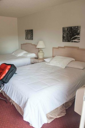 Sugar Loaf Lodge: double king room