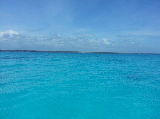 Kasha Boutique Luxury Hotel: Snorkeling