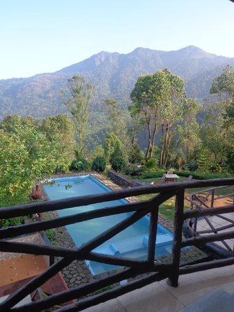 Wild Elephant Eco Friendly Resort: Swimming Pool View