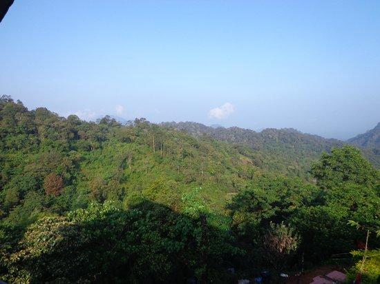 Wild Elephant Eco Friendly Resort: Mountain View 1