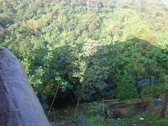 Wild Elephant Eco Friendly Resort: Mountain View 2