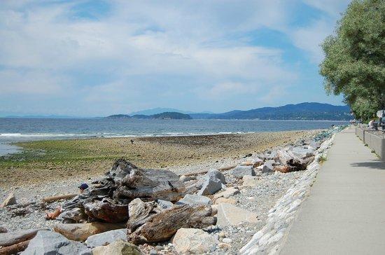 Bella Beach Inn: Davis Bay - Sea Wall (1)