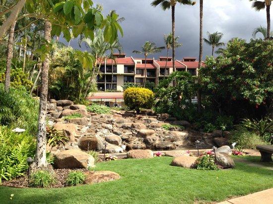 Kamaole Sands: riviére