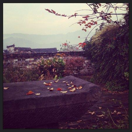 Chashiwu: The garden