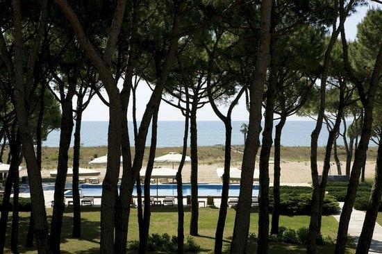 Hotel Resort Bellevue: Panorama dalla pineta