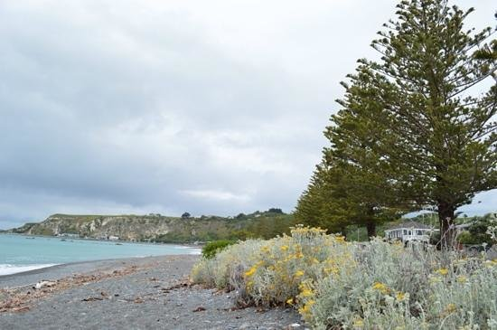Kaikoura Boutique Hotel: The hotel is across the road from a beautiful beach