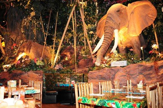 The Rainforest Cafe Dubai Menu