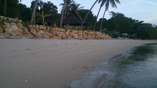 Kupu Kupu Phangan Beach Villas and Spa by l'Occitane: Beach in the evening