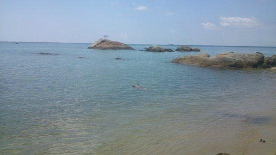 Kupu Kupu Phangan Beach Villas and Spa by l'Occitane: Snorkelling