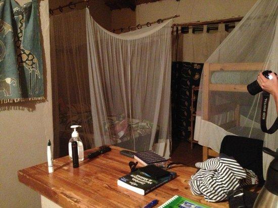 Gecko Lounge: inside the cabin