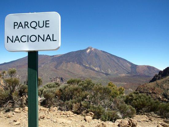 Teneriffa Kreaktiv - Day Tours: Teide