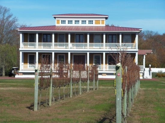 The Southern Mansion : Willow Creek Winery