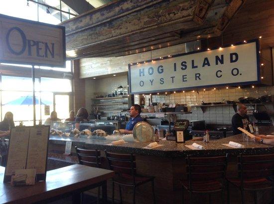 Hog Island Oyster Company: Visione d'insieme