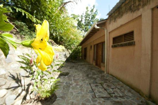 La Villa de Soledad B&B : Amapola