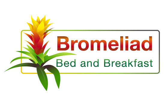 Bromeliad Bed and Breakfast: The Bromeliad Guzmania was the inspiration for our logo.