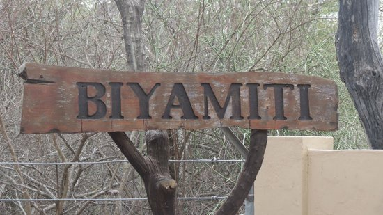 Biyamiti Bushveld Camp: At entrance gate