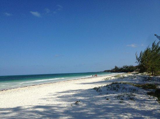 Hakuna Majiwe Beach Lodge: spiaggia del resort