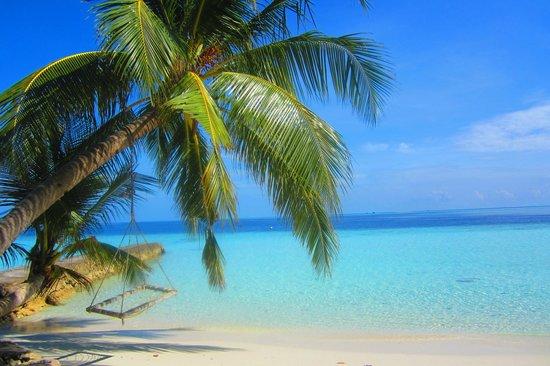 Biyadhoo Island Resort: farniente