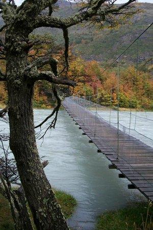 Glacier Grey : Pasarela sobre rio Pingo