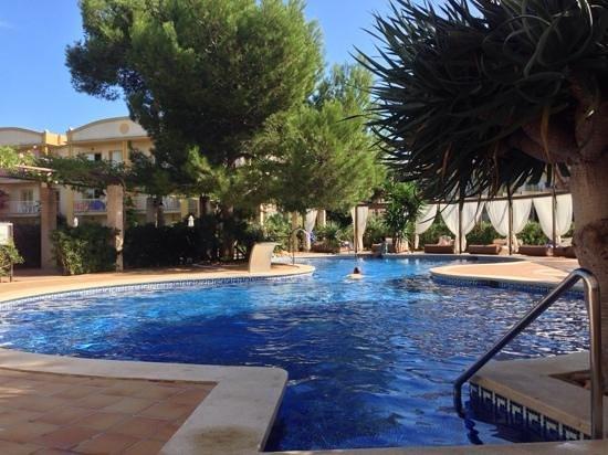 Zafiro Mallorca: Erwachsenen-Pool