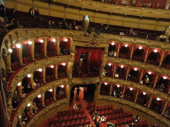 Opéra de Nice : La salle et les loges