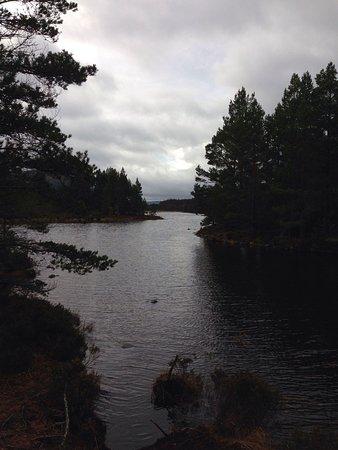 Loch an Eilein: Our walk round the Loch.