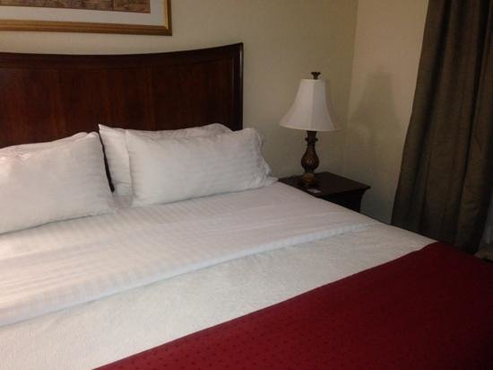 Holiday Inn Brunswick-I-95 (Exit 38) : nice rooms