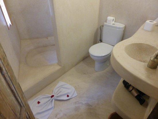 Riad Matham : baño