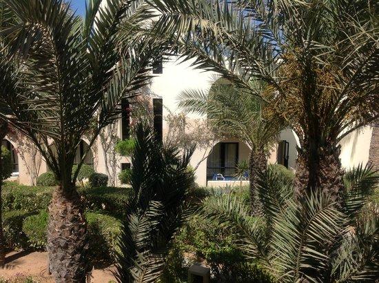 SENTIDO Djerba Beach : Les plantes sont très bien entretenues !