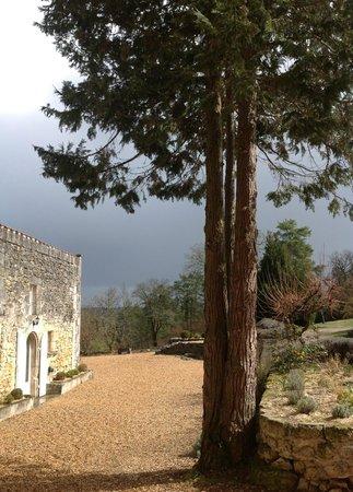 Chateau de Vieux Mareuil: lumière