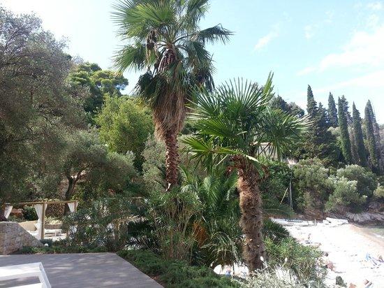 Lafodia Hotel & Resort: View from hotel beach.