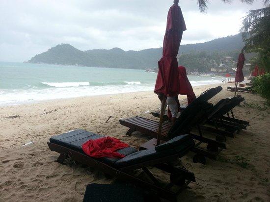 Anantara Rasananda Koh Phangan Villas : Each room has a couple of loungers reserved on the beach
