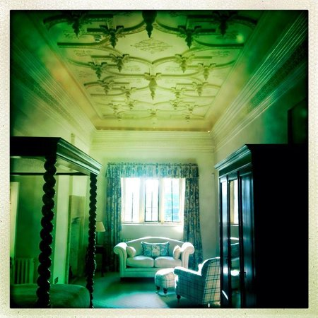 Langford Fivehead: Amazing ceiling in the Nathaniel Barnard room