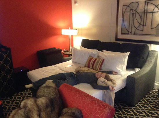 Kimpton Hotel Monaco Washington DC : Finally!  A place to put Miles!