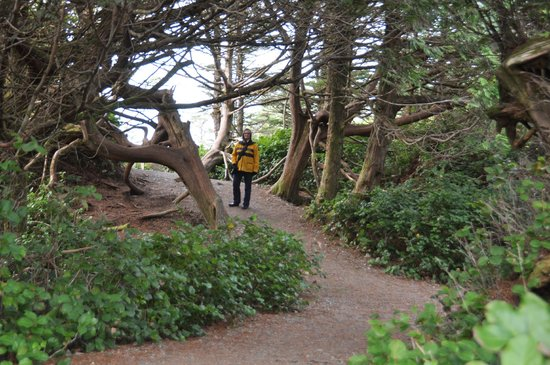 Wild Pacific Trail: Easy Walking