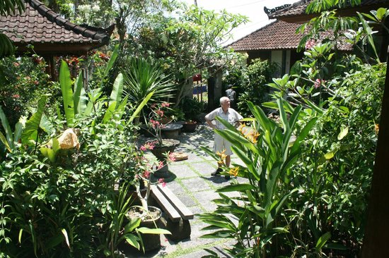 Nirwa Ubud Homestay : garden