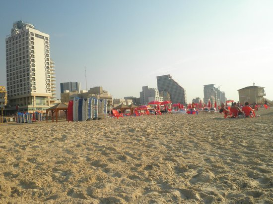 Orchid Tel Aviv: Vista dell'hotel dalla spiaggia