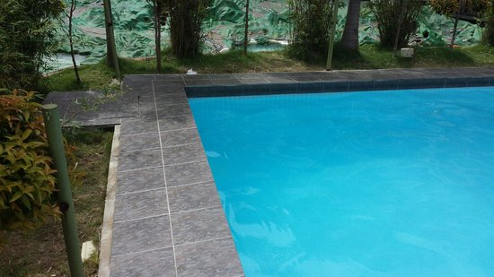 Piscine avec couche bb plein de caca picture of landcons for Appart hotel montpellier avec piscine