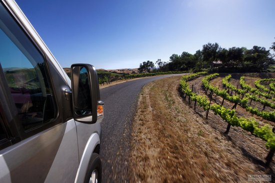 Sustainable Vine Wine Tours : beautiful view of the vineyards along the drive to the next winery