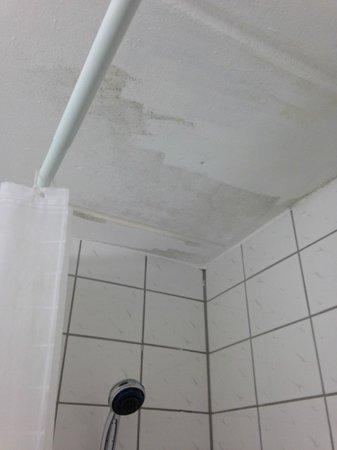 City INN Hotel Leipzig: Hier hatte der Maler bei der Reco gerade Pause