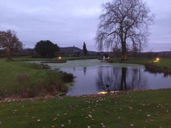 Llansantffraed Court: pond