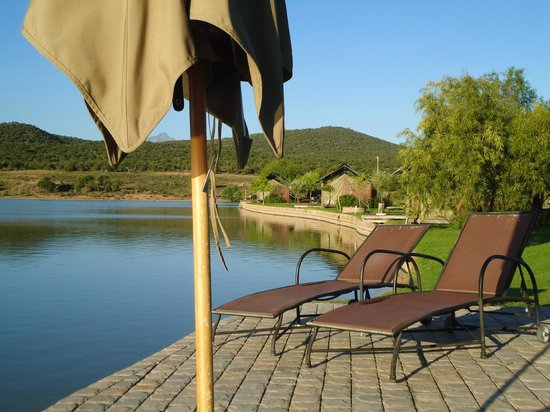 Buffelsdrift Game Lodge: lekker aan het zwembad