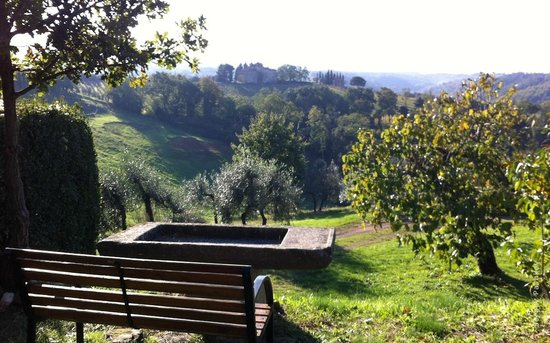 Salvadonica - Borgo Agrituristico del Chianti: Релакс
