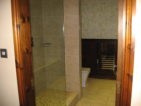 Best Western PLUS Pastures Hotel : Shower