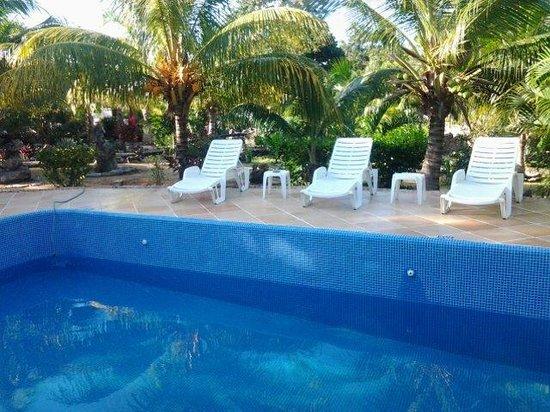Itour Akumal Villas Tortugas: zwembad