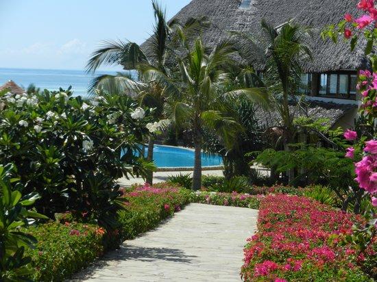 Jacaranda Beach Resort : Viale fiorito del villaggio